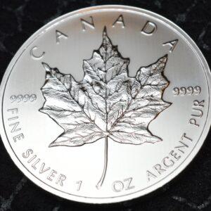 2013 Maple Leaf Rev B 300x300 - 2013 Maple Leaf 1oz Fine Silver Coin