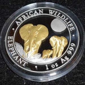 Gilded 2014 300x300 - 2014 SOMALIAN GOLD GILDED AFRICAN ELEPHANT 1OZ FINE SILVER COIN