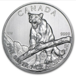 2011 5 COUGAR 1OZ PURE SILVER COIN FRONT 150x150 - 2012 Canada $5 Cougar 1oz Pure Silver Coin -Some Milk Spots and/or Minor Toning