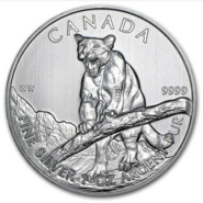2011 5 COUGAR 1OZ PURE SILVER COIN FRONT 185x185 - 2012 Canada $5 Cougar 1oz Pure Silver Coin -Some Milk Spots and/or Minor Toning