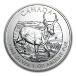 2013 5 PRONGHORN ANTELOPE 1OZ PURE SILVER COIN FRONT 150x150 - 2013 Canada $5 Pronghorn Antelope 1oz Pure Silver Coin