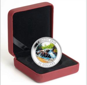 2014 20 RIVER RAPIDS PURE SILVER COIN BOX 300x294 - 2014 CANADA $20 RIVER RAPIDS PURE SILVER COIN