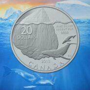 2013 Iceberg card 185x185 - 2013 Iceberg $20 for $20 1/4oz Fine Silver Coin