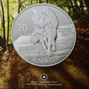2013 Wolf Card 185x185 - 2013 Wolf Canada $20 for $20 1/4 Fine Silver Coin