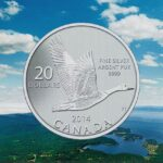Goose Cover Photo 150x150 - 2014 Goose $20 for $20 1/4oz Fine Silver Coin