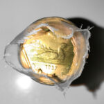 19871 150x150 - 1987 Canada $1 Original Mint Roll-1st Loonie!